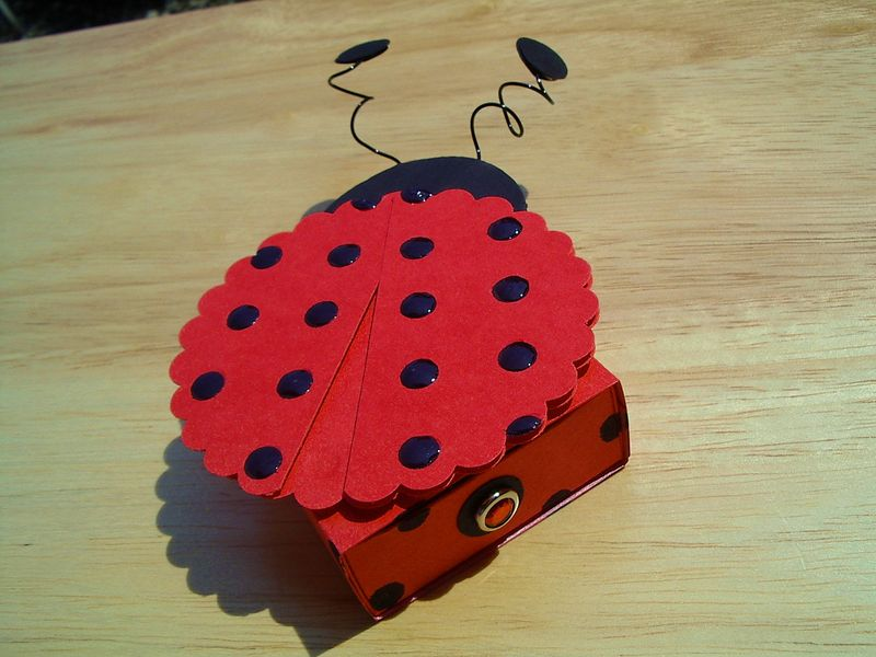 Lady bug match box
