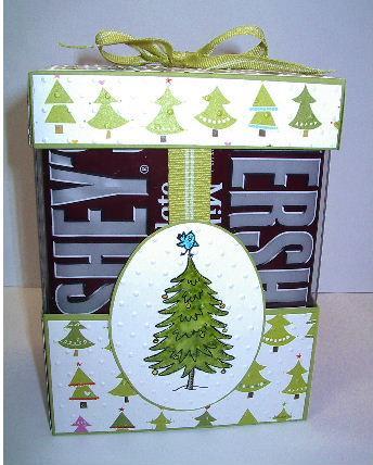 Dec 2011 workshop-S-mores box #1